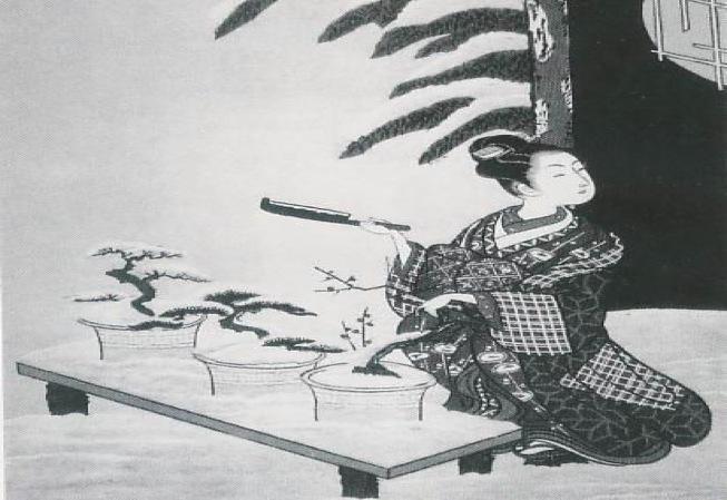 Risultati immagini per L'arte giapponese dei bonsai