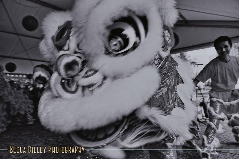 chinese lion dancers wedding photographer minneapolis mn