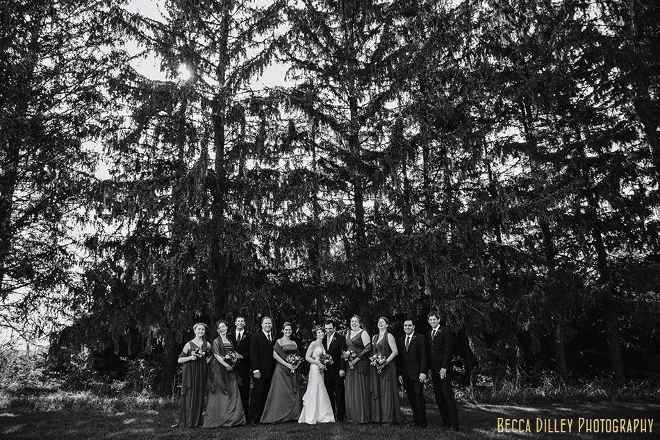 wedding party at lussier center prairie wedding madison wi