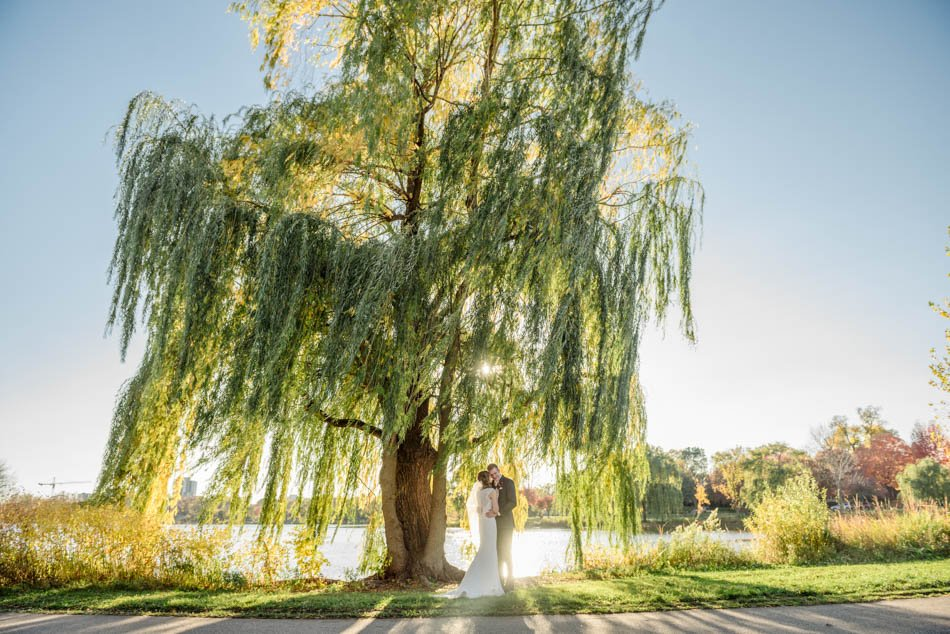 minneapolis wedding photographer bride and groom with bright willow tree