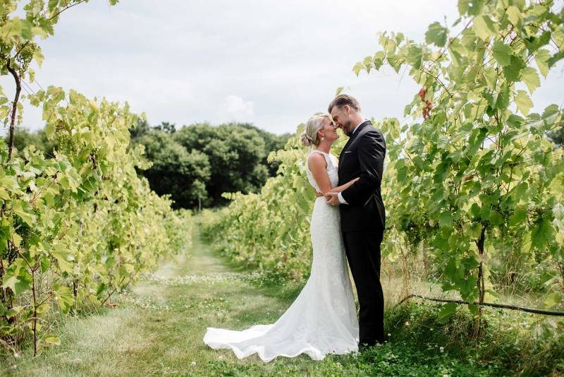 bride and groom meet in vineyard