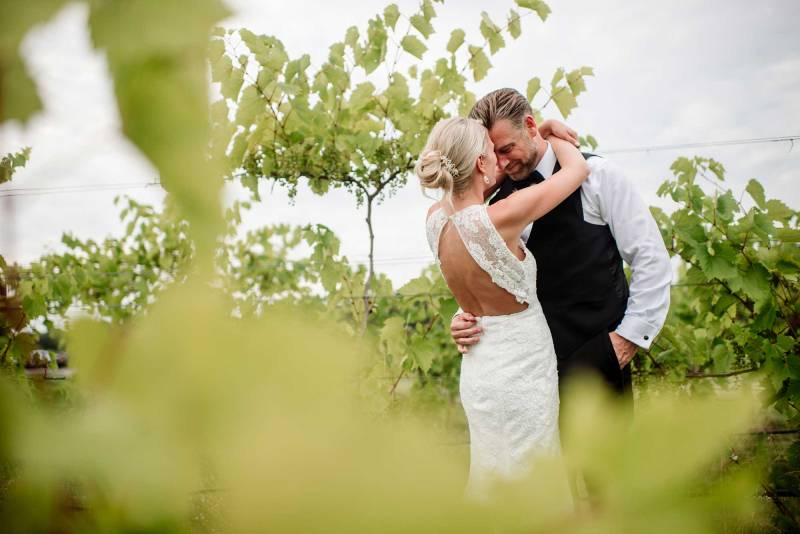 bride and groom embrace between grape vines in MN vinyard wedding