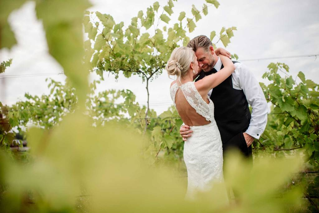 bride and groom embrace between grape vines in MN vinyard wedding