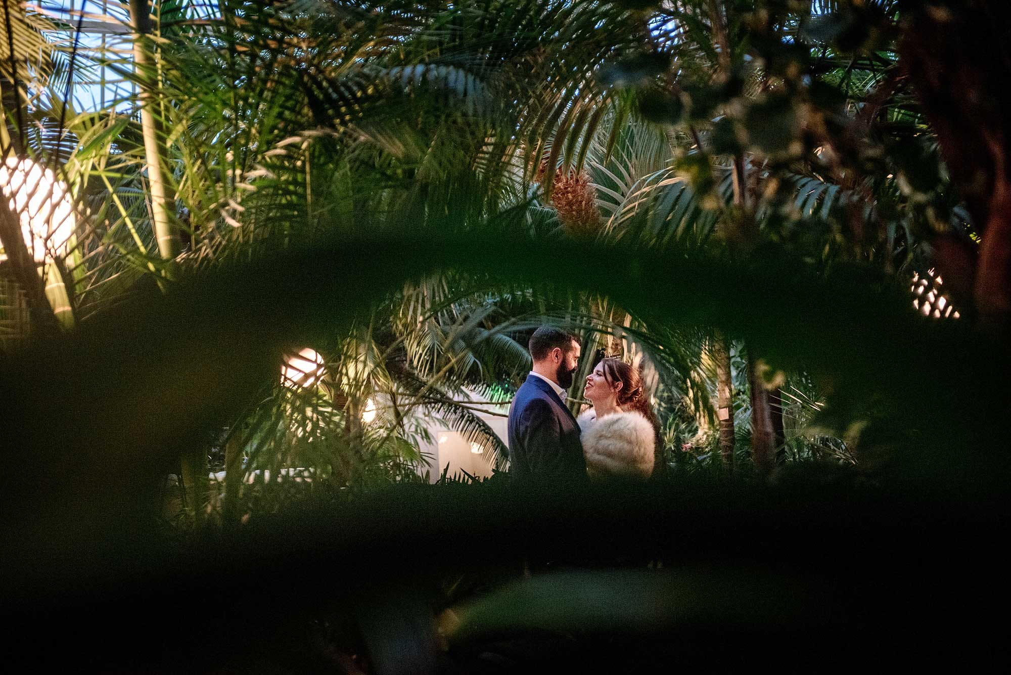 bride and groom framed with leaves at como conservatory wedding