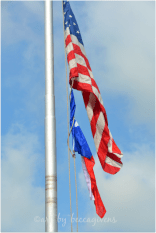 The Colors of the Day -- Proud to be an American