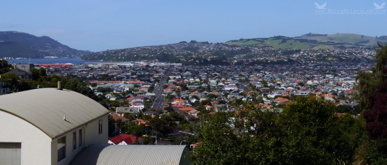 View of South Dunedin and Some Surrounding Suburbs.