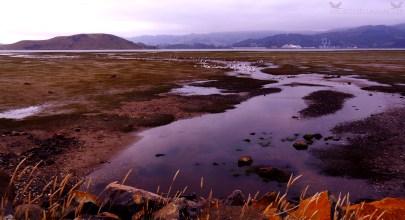 View of Port Chalmers (Port Otago Ltd.) from Harwood, Otago Peninsula, New Zealand.