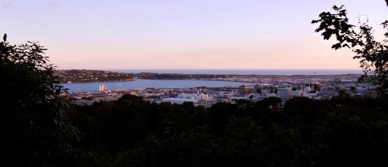 View of Dunedin City from Tolcarne Ave, Dunedin, New Zealand.