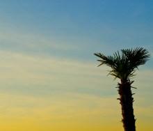 Sunset on NYE