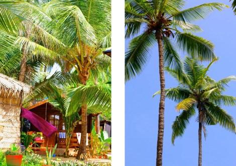Mysigt med blå himmel, oändliga palmer och färgglada textiler.