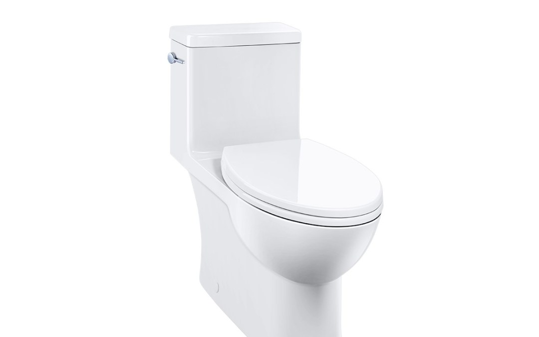 Caroma: The Original Dual Flush Toilet