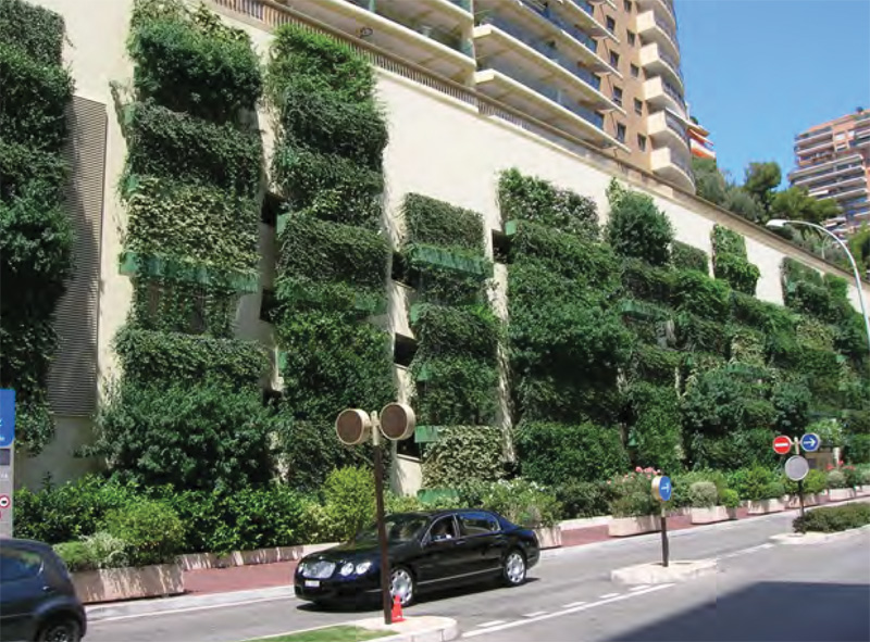 Living walls can benefit your community and local environment