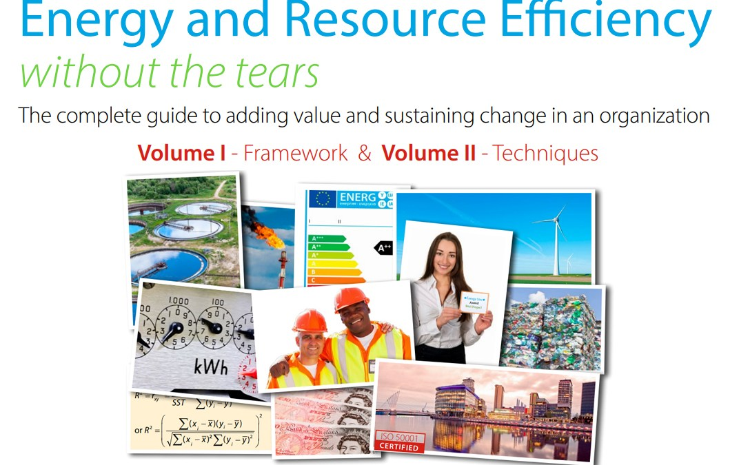 A Complete Guide To Energy and Resource Efficiency for Business