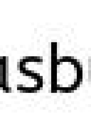 A flooded backstreet in Venice