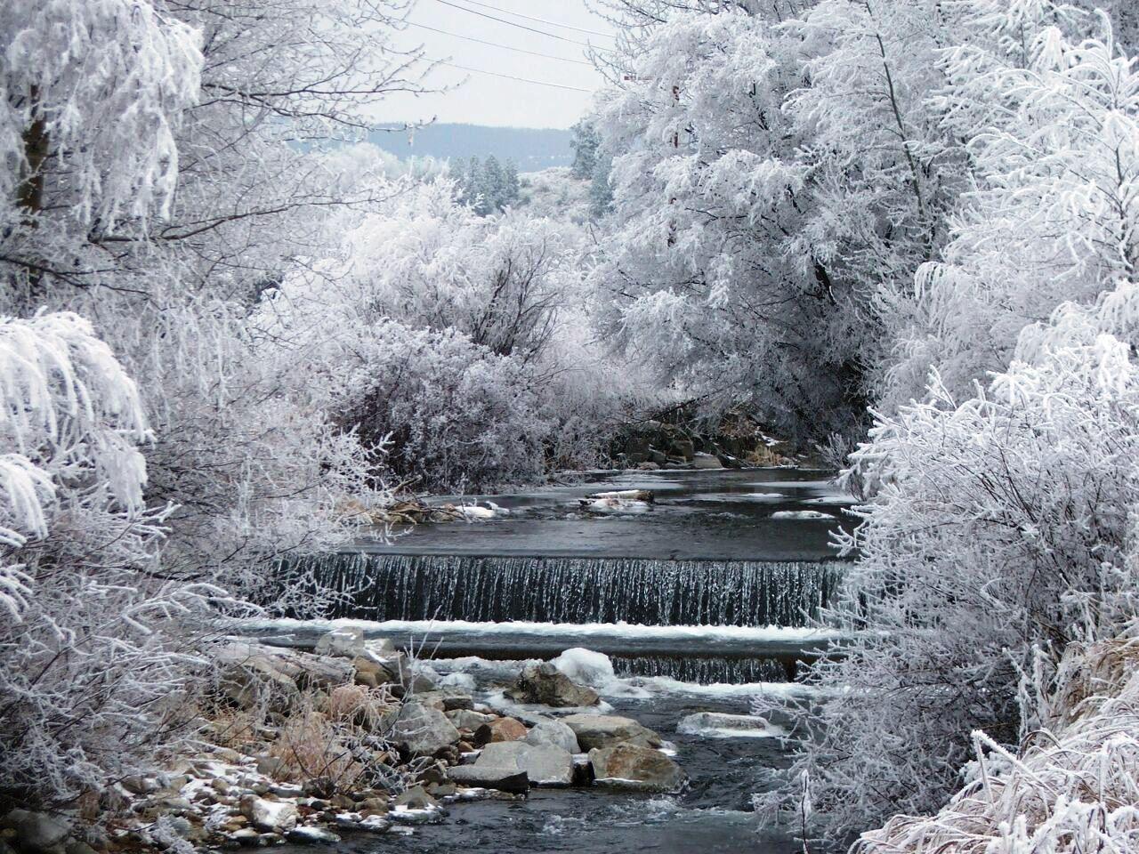 Frosty Creek
