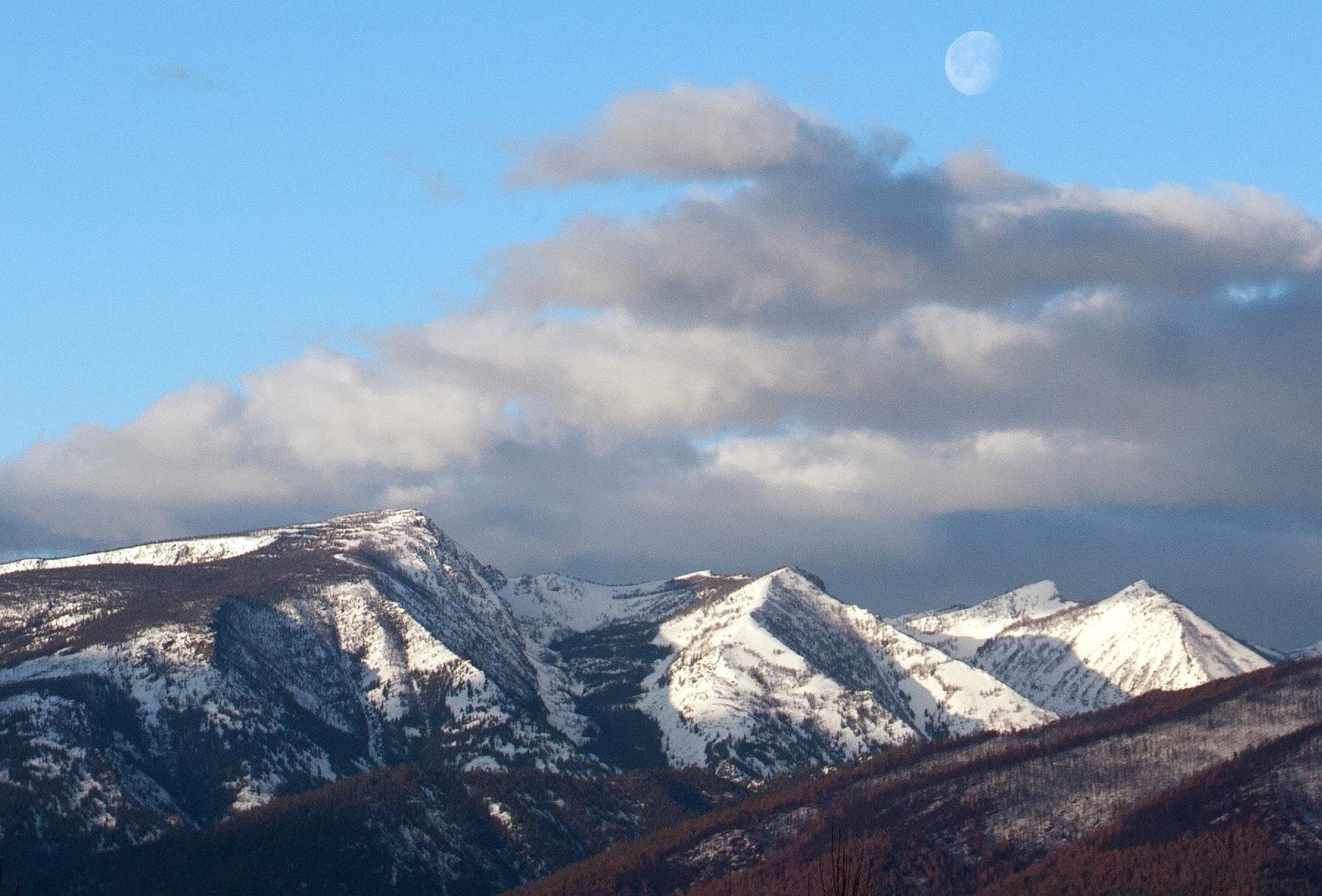 Ward moon