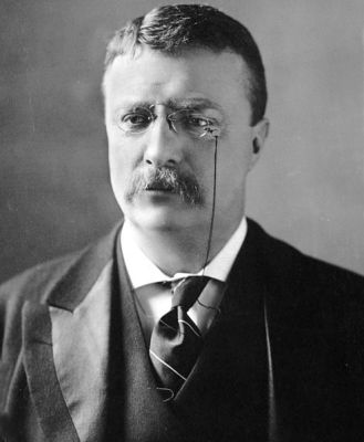 A photograph of Theodore Roosevelt from about 1902, by M.P. Rice.