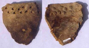 pottery dating to 20,000 BCE from Zianrendong China