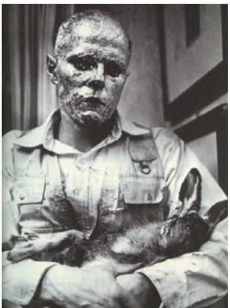 Joseph Beuys performing 'How to Explain Pictures to a Dead Hare' (1965).