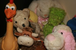 Mr Teddy and friends