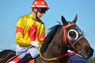 This horse looks confident and excited, prior to the race. The jockey appears deep in thought, in his riding tactics.