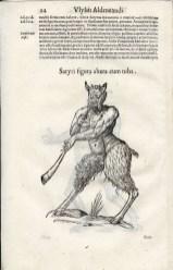 Satyr, page 24, Aldrovandi's Monstrorum historia, 1642. BBML
