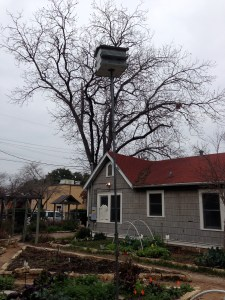 Purple Martin House and Garden