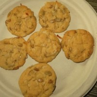South Dakota Sunflower Seed Cookies