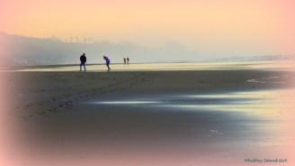 Glen Eden Beach 118201401 - Copy - Copy