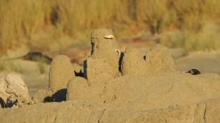Sand Castle 1111201408