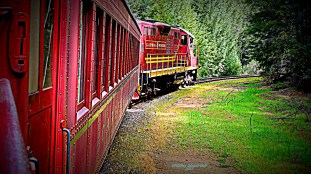 Two Skunk Trains run; one out of Fort Bragg and another out of Willitz.