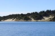 Great Dunes of Oregon 318201505