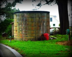 There are water towers all over town.