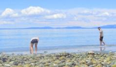 A little poking around on the beach....