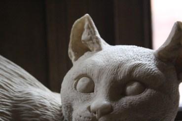 My friend the Roman Cat