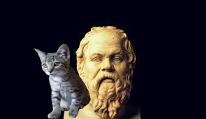 The great thinker and his cat