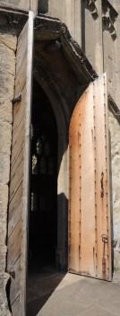 Camery garden door