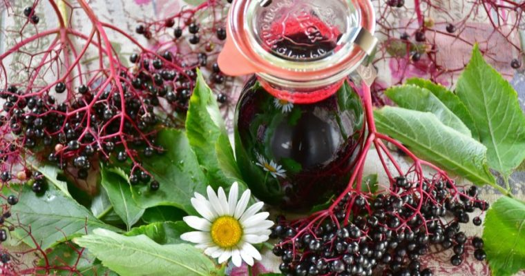 Thursday Things: Elderberries and Spreadable Cheese