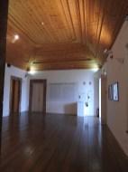 Panelled ceilings