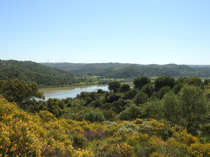 Guadiana view