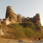 Fort Madhogarh