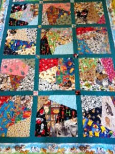 One of two quilts made for my daughter using all cat and dog fabric (and all fabric I had on hand, sadly)