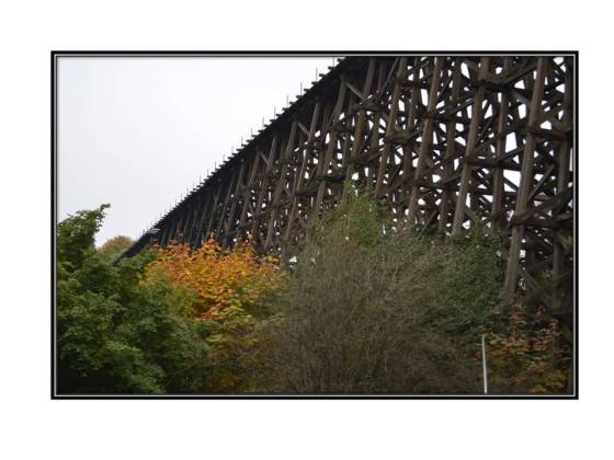 Wilburton Trestle, Bellevue Washington