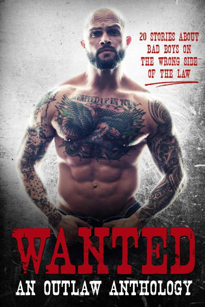 Wanted anthology cover
