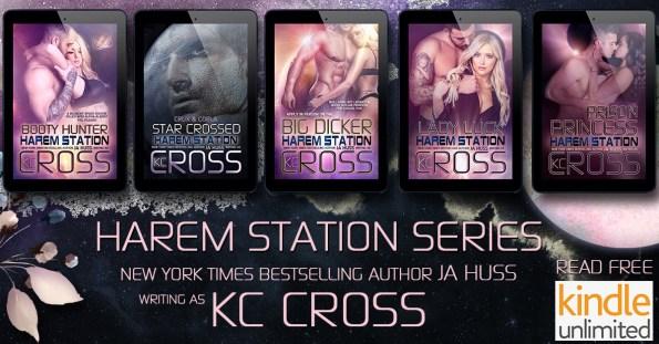 Harem Station series graphic