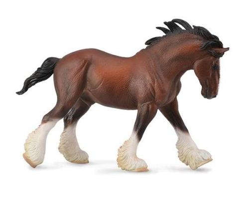 Bay Clydesdale Stallion