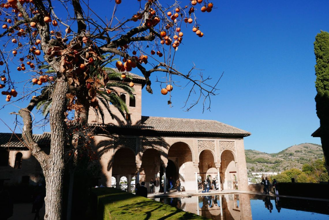 allhambra-andalucia-spain5