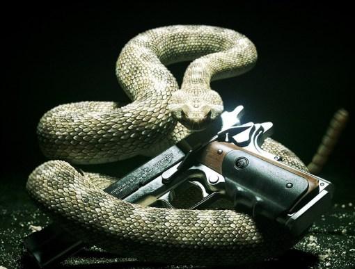 snakegun