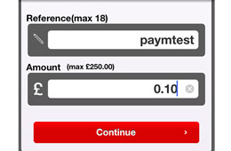 How Paym works