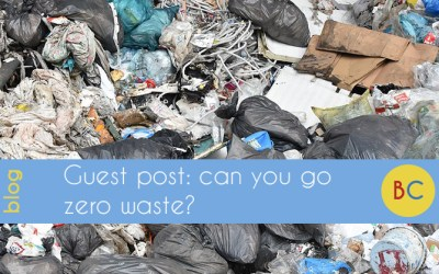 Guest blog: can you go zero waste?